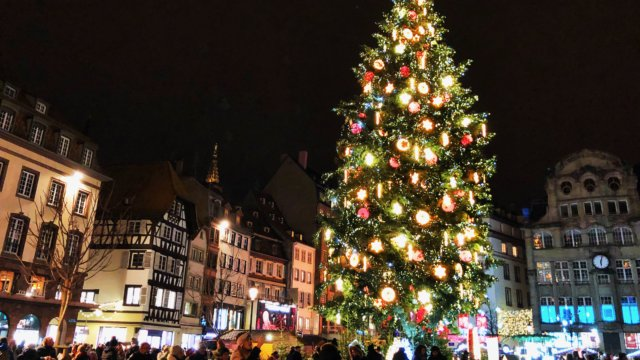 ストラスブールのクリスマスツリー